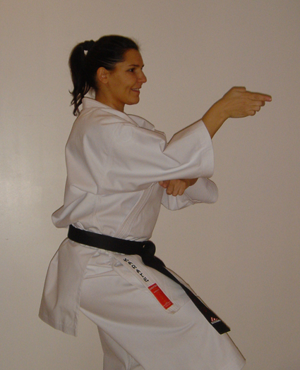 Anne goudenove karategi