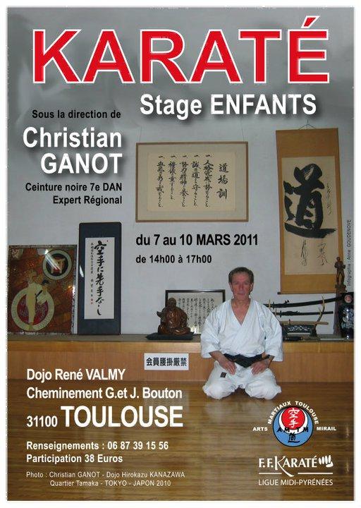 Art dojo affiche karate10