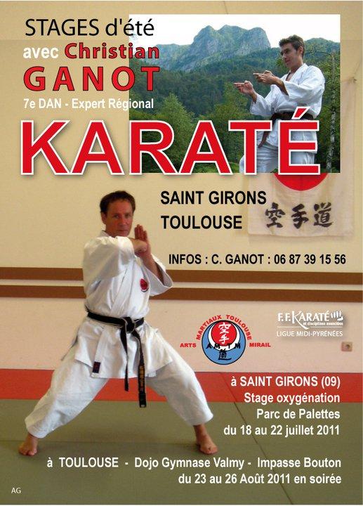 Art dojo affiche karate6